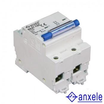 NZ47-125 2P Mini Circuit Breaker