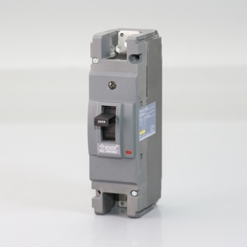 NZC250H-1P 250A Molded case circuit breaker