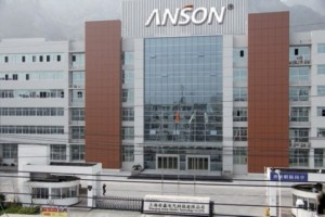 Anson Company Overview