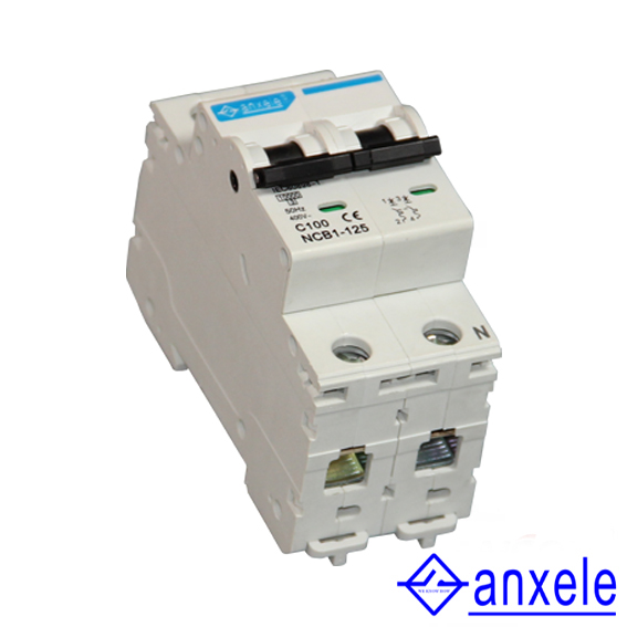 NCB1-125 2P Mini Circuit Breaker